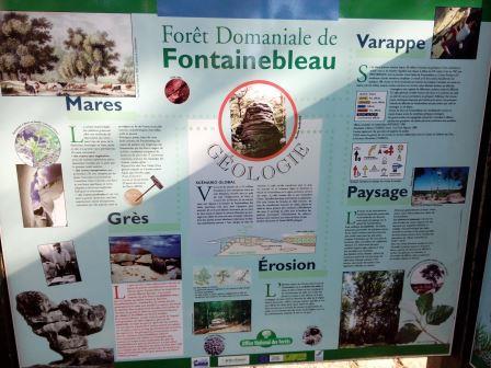 Coll ge lyc e cfa ufa saint antoine en voie scolaire - Paysagiste fontainebleau ...