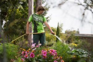 CAP et Bac Pro Jardinier et Aménagements paysagers